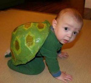 baby-turtle-costume-300x273